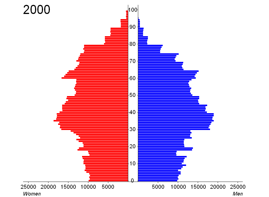 SILO Visualization example: Age pyramid